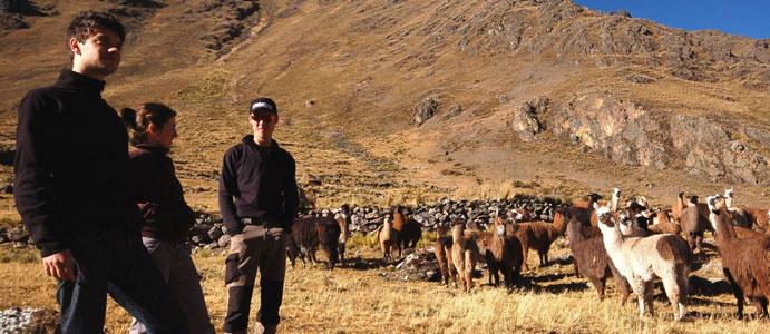 Ekipa Transandino w Peru. (Fot. Marco Jurado)