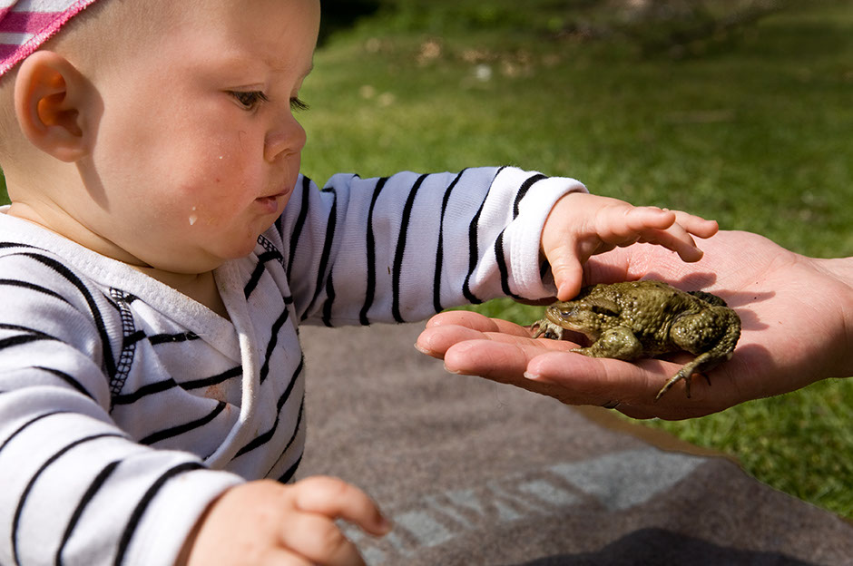 Podróżowanie z dzieckiem to bezpośrednie poznawanie przyrody.