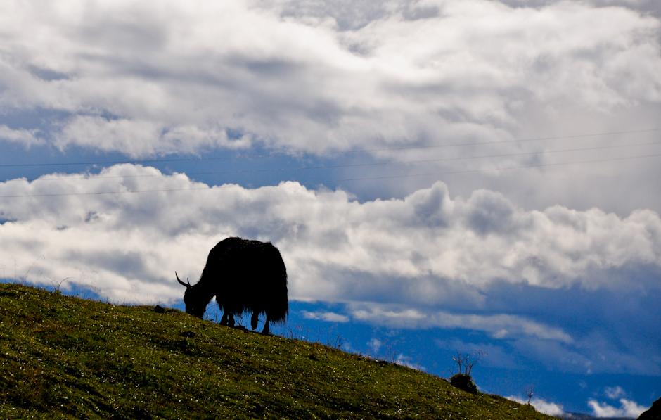 """Tibetan Highway - zdjęcia z chińskiego odcinka """"tybetańskiej autostrady"""""""