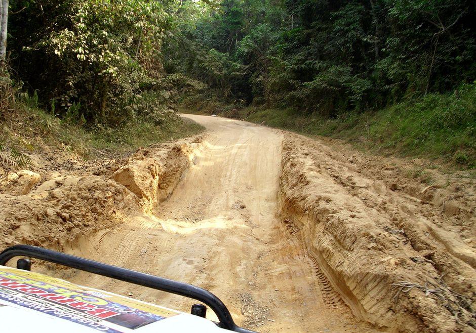Droga główna między Ekok a Bamendą