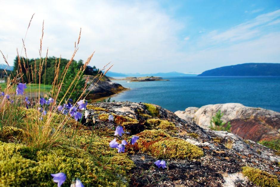 Skandynawski krajobraz. Fotografia podróżnicza