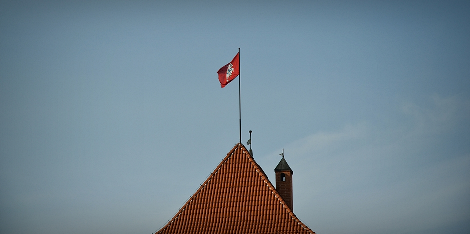 Pogoń - herb Litwy