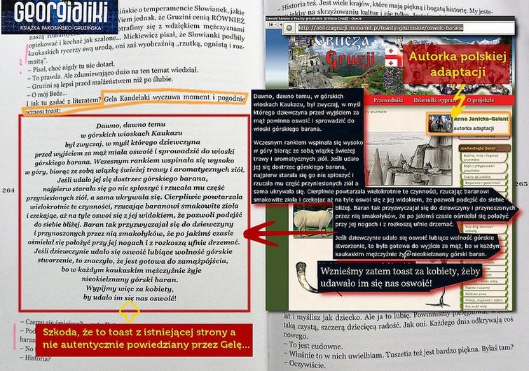 Plagiat w książce Georgialiki
