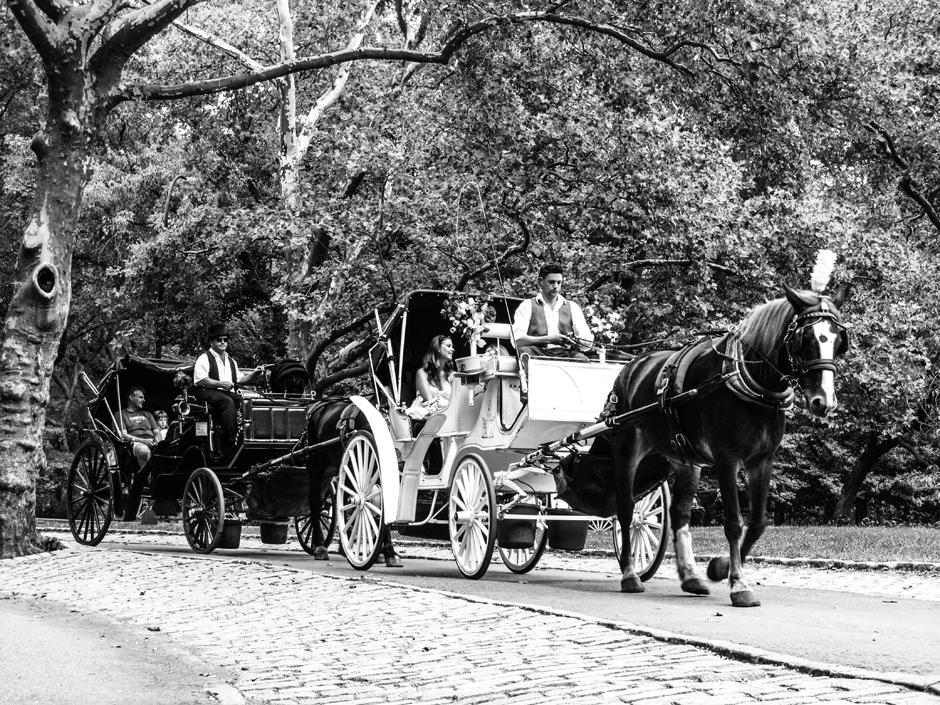 Dorożki na ulicach Nowego Jorku - zdjęcia z wycieczki