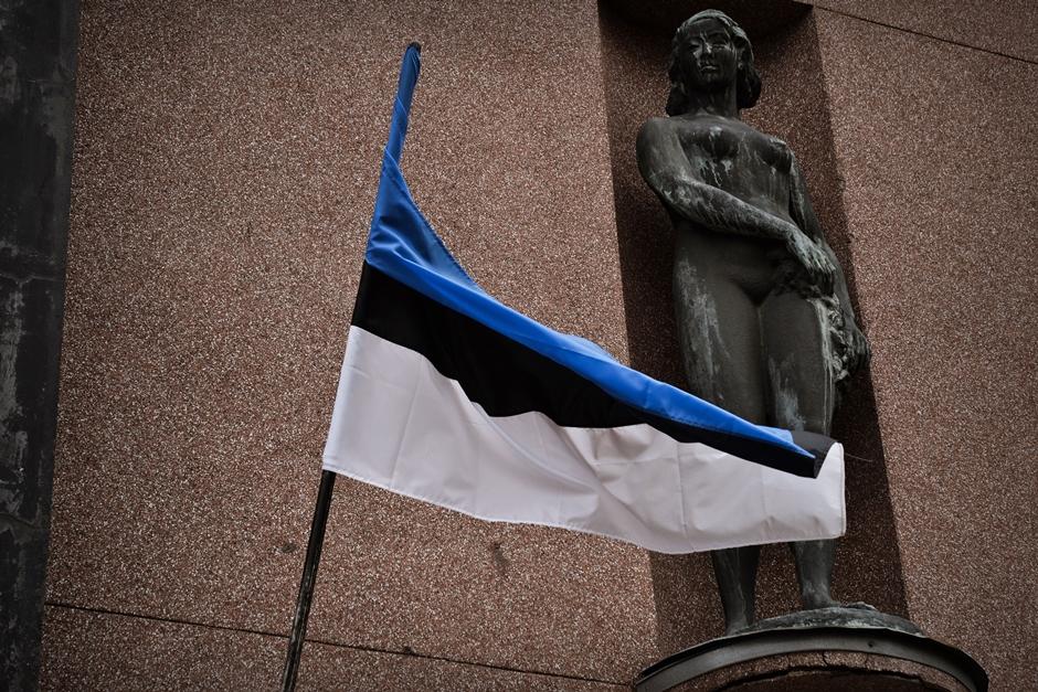 Flaga Estonii - foto
