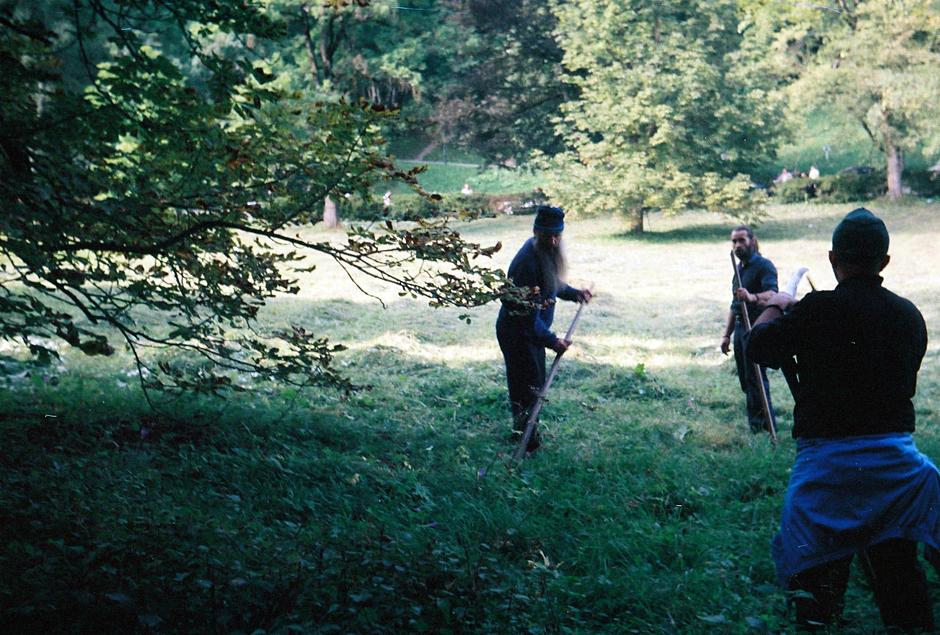 Brodacze koszą trawę - zdjęcia z wczasów w Rumunii