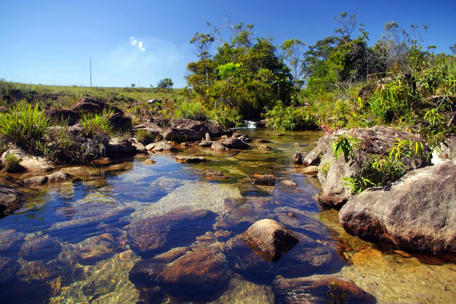 Krystalicznie czysta woda w rzece