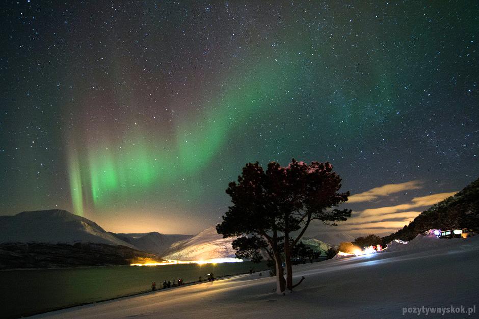 Zorza polarna - zdjęcia z podróży za koło polarne