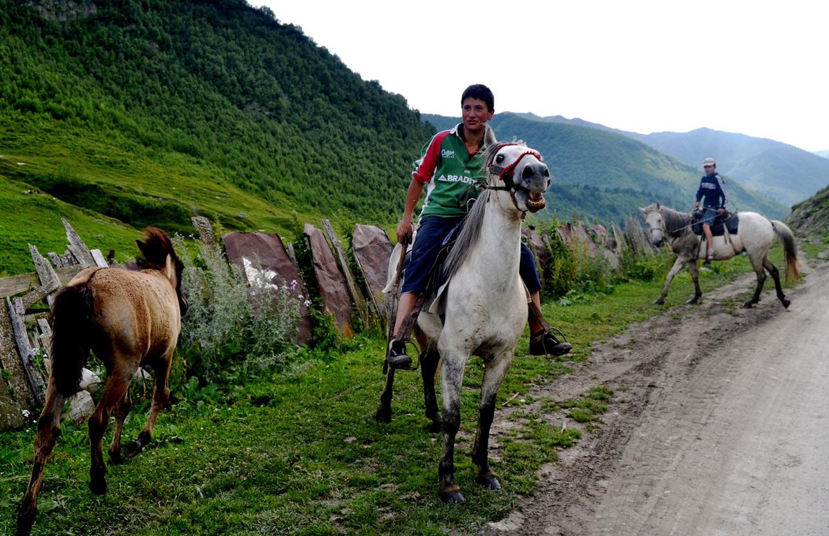 Niektórzy Swanowie zajmują się hodowlą koni. Współcześnie służą one przede wszystkim turystom.